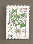Stamps Russia -  Philadelphus coronarius
