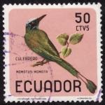 Sellos del Mundo : America : Ecuador : MOMOTUS MOMOTA(culebrero)