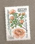 Sellos de Europa - Rusia -  Rosa pimpinellifolia
