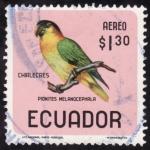 Stamps Ecuador -  PIONITES MELANOCEPHALA(chirlecres)
