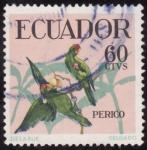 Sellos de America - Ecuador -  PERICO