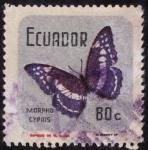 Stamps Ecuador -  MORPHO CYPRIS