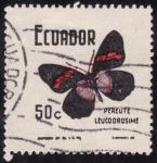 Stamps Ecuador -  PEREUTE LEUCODROSIME