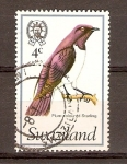 Stamps Africa - Swaziland -  PÁJARO