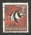 Sellos de Oceania - Australia -  pez humbug