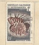Stamps Oceania - New Caledonia -  Pez Brachryrus zebra