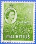Sellos de Africa - Mauricio -  MAURICIO 1953 (S252) Coronacion - Planta de Aloe 3c