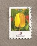 Sellos de Europa - Alemania -  Tulip�n