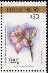 Sellos de America - Chile -  FLORES DE CHILE