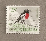 Stamps Australia -  gorrión rojo