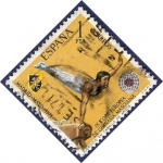 Stamps Spain -  Edifil 2034 Campeonato europeo de gimnasia 1