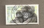 Sellos de Europa - Alemania -  Aimales en peligro extinción:Gorilas