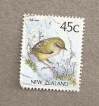 Sellos de Oceania - Nueva Zelanda -  Pájaro genero Salpinctes