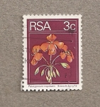 Stamps South Africa -  Pelargonium inquinans