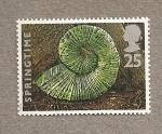 Sellos de Europa - Reino Unido -  Organismos marinos