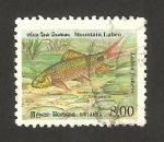 Stamps : Asia : Sri_Lanka :  pez labeo fisheri