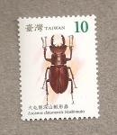 Stamps Asia - Taiwan -  Escarabajos de Taiwán