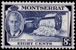 Stamps United Kingdom -  MONTSERRAT- Cribando la lana