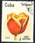 Stamps Cuba -  TULIPANES- RINGO