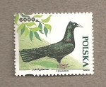 Stamps Poland -  Ave