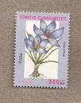Sellos de Asia - Turquía -  Crocus biflora