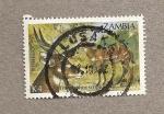 Stamps Yugoslavia -  Tragelaphus scriptus