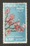 Sellos del Mundo : Africa : Somalia : somalia italiana - flora, adenium somali
