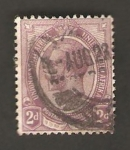 Stamps Africa - South Africa -  unión Sudáfrica - george V