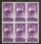 Stamps Spain -  Sahara / Fauna