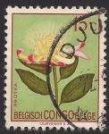 Sellos de Europa - Bélgica -  Flores 1952: Protea
