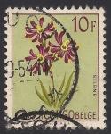 Sellos de Europa - Bélgica -  Flores 1952: Silene