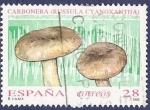 Stamps Spain -  Edifil 3246 Micología Carbonera 28