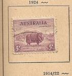 Stamps Oceania - Australia -  Oveja merina