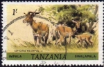 Sellos del Mundo : Africa : Tanzania : Tanzania 1980 Sello Fauna Impala Swalapala Aepycero Melampus Usado