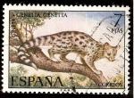 Sellos de Europa - España -  Fauna. Gineta