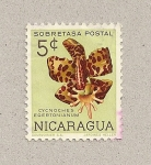 Stamps Nicaragua -  CynochesEgertonianum