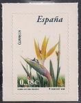 Stamps : Europe : Spain :  Flora y Fauna-Ave del paraiso