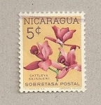 Stamps Nicaragua -  Flor Cattleya skinner