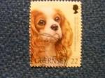 Sellos de Europa - Reino Unido -  GUERNSEY  DOG  CLUB