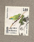Stamps Asia - Sri Lanka -  Ave Megalaima flavifrons