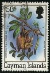 Stamps United Kingdom -  Islas Caimán. Muerciélago insectívoro macrotus waterhousii.