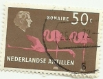 Stamps America - Netherlands Antilles -  Bonaire 1958 50c