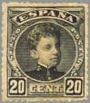 Sellos de Europa - España -  ESPAÑA 1901-5 247 Sello Nuevo Alfonso XIII 20c Tipo Cadete Negro Numero de control al dorso