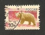 Stamps : Europe : Russia :  fauna, oso pardo