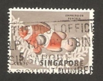 Stamps : Asia : Singapore :  pez amphiprion percula