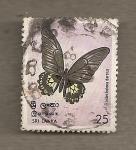 Sellos de Asia - Sri Lanka -  Mariposa Troides helena darsius