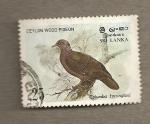 Sellos de Asia - Sri Lanka -  Perdiz de la madera de Ceilán