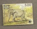 Stamps Asia - Sri Lanka -  Elefante Elephas maximus ceylonensis