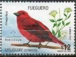 Stamps : America : Uruguay :  Fueguero (Piranga flava)
