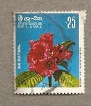 Sellos de Asia - Sri Lanka -  Ma-Ratmal
